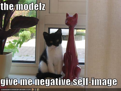 funny-pictures-self-image-cat.jpg