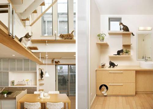 Cat friendly houses feminist philosophers for Japanese dream house