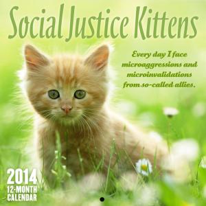 microaggressions kitten